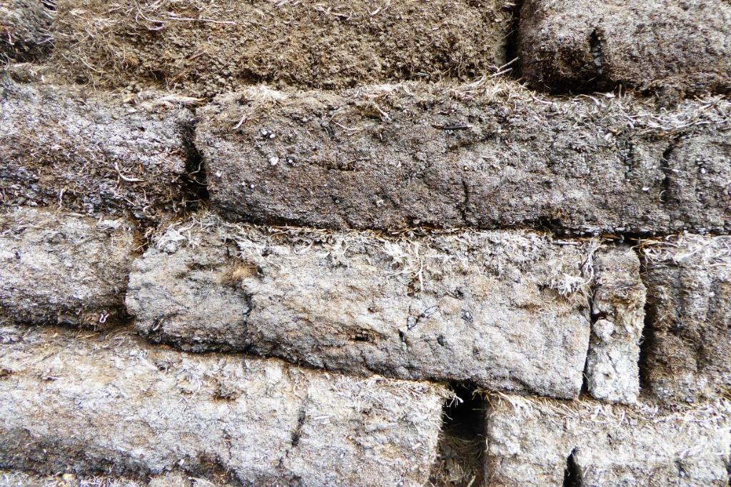 Detalle de las paredes de pasto de algunas casas y los establos