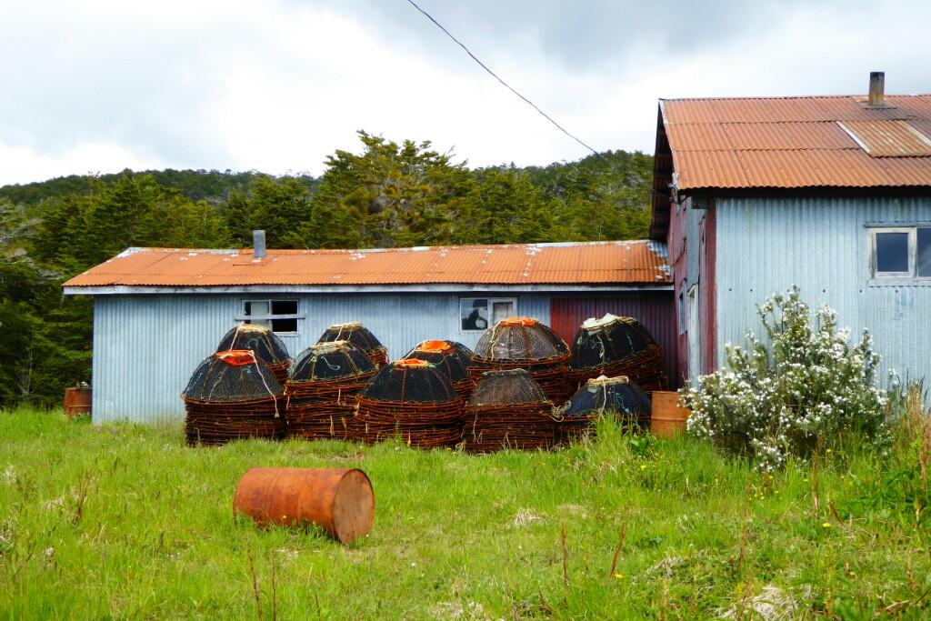 Las trampas para la centolla se pueden ver en muchas casas y almacenes de Puerto Williams y Puerto Toro