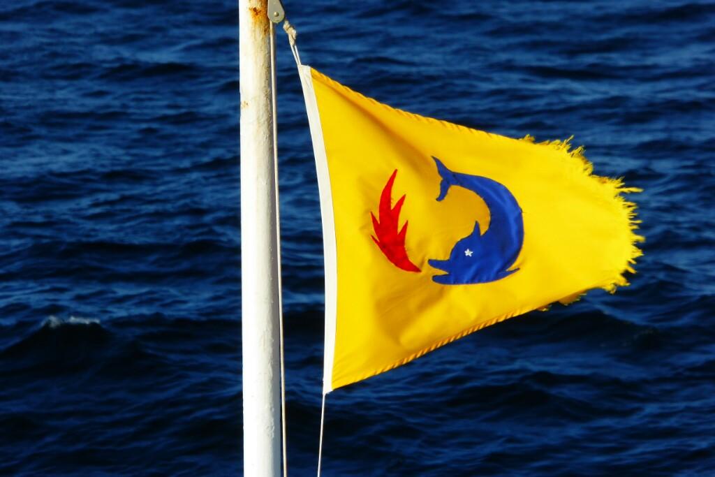 Con esta bandera hubiera sido casi un fraude no ver delfines