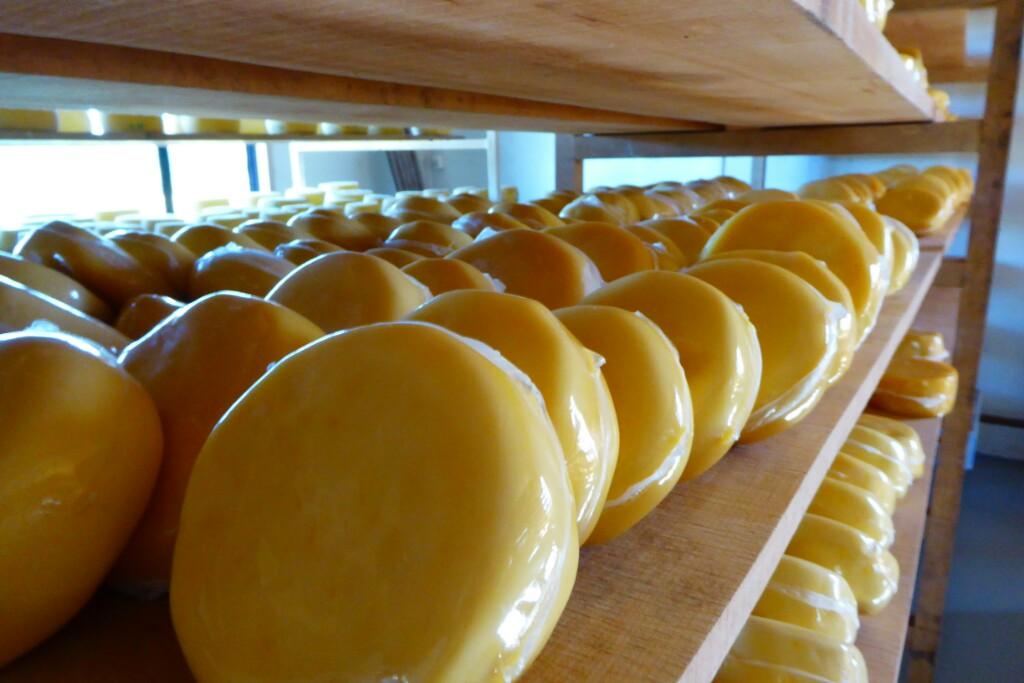 Mama! Aquí hacen unos quesos muy parecidos a los de Mondriz!