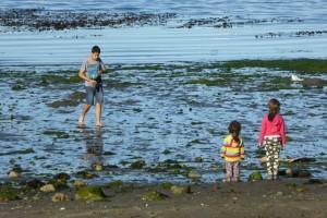Observando un chico que marisqueaba en la playa de Chonchi