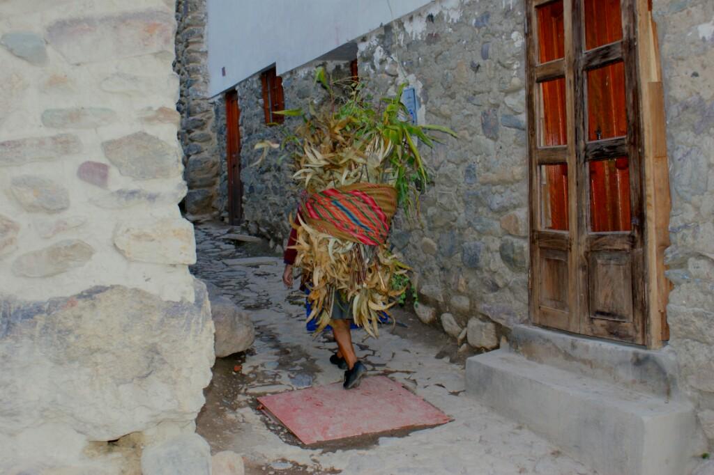 Cargando maiz como seguramente se hacía hace 500 años