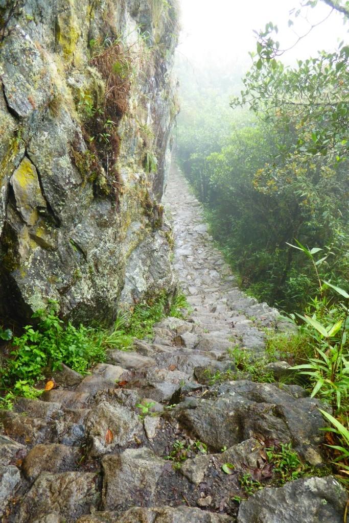 La subida a la montaña de Machu Picchu, aunque la niebla no deje ver la ciudadela, resulta una excursión mágica