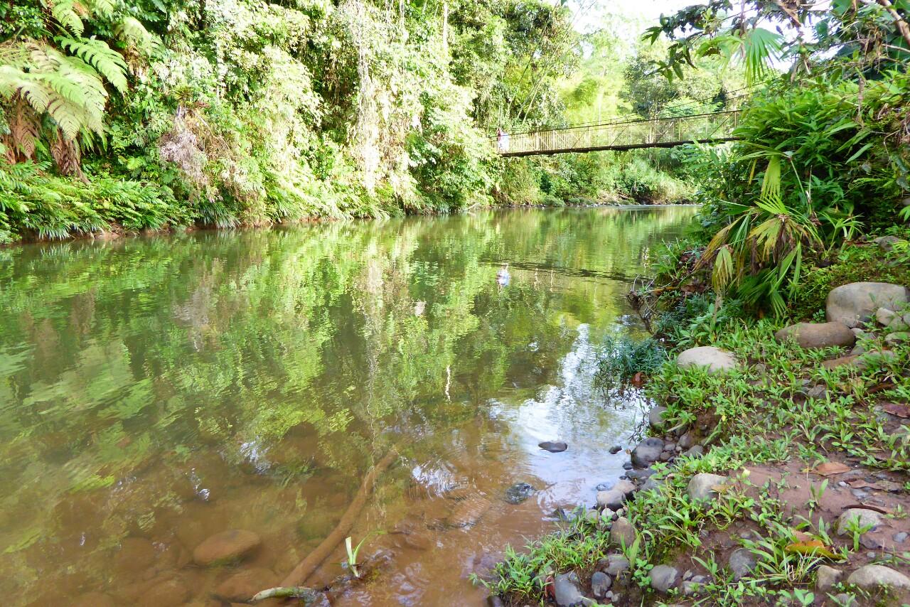 El paseo junto al Puyo, con uno de sus puentes colgantes