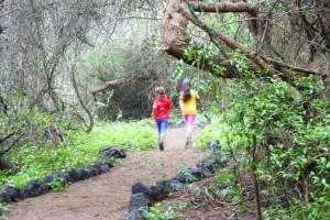Mía y Jana corriendo por el sendero del Centro de Recuperación