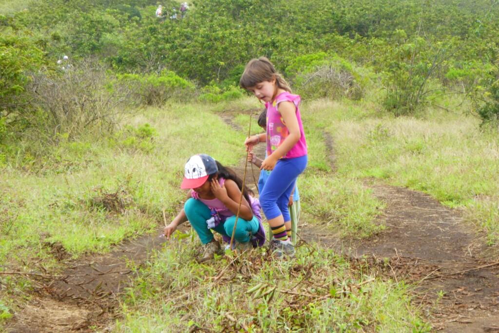 Y mientras tanto Mía, Jana y Bruna buscaban insectos en el camino